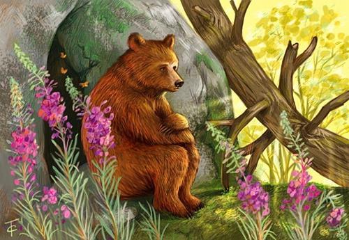 Сказка о медведихе картинка