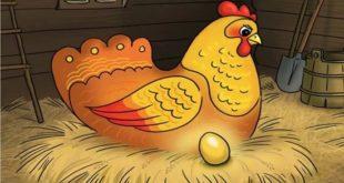 сказка Про курочку, которая несла золотые яйца картинка