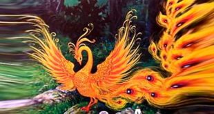 сказка Птичий царь Кук картинка