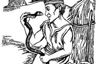 Человек и змея сказка
