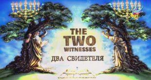 Два свидетеля