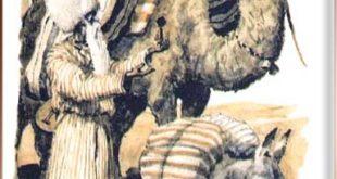 Говорящий верблюд сказка