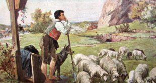 Как пастух женился