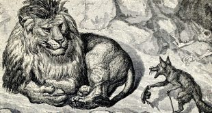 Лев и лис сказка