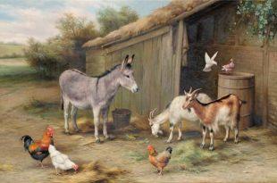 Петух, свинья, коза и осел