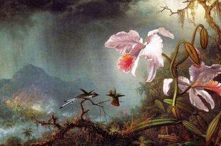 Райский цветок сказка