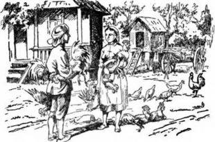 Шардын и каплуны сказка