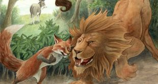 Сказка Как лиса перехитрила льва