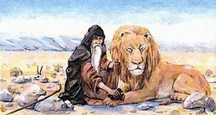 Старик и лев сказка
