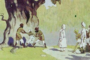 Свидетели вора сказка