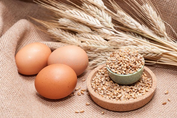 яйцо и зерно